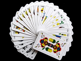 See our Play Hearts Card Game 15